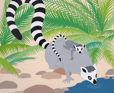 stripes ring tail lemurs